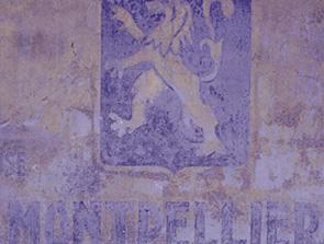 Montpellier, 2002. Bild:garage2cv 2003
