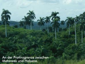 An der Provinzgrenze zwischen Matanza und Habana - Bild: Archiv garage2cv/Eggermann