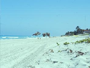 Blauer Himmel und kilometerweite Sandstrände: Das touristische Kuba-Bild / Bild: Archiv garage2cv/Eggermann